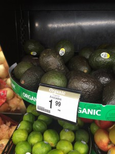 Avacados organic